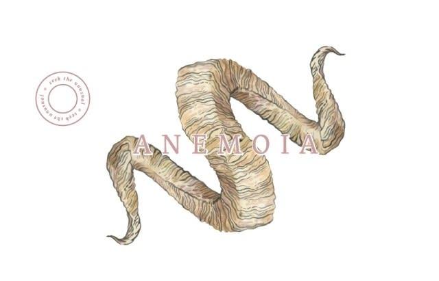 Anemoia 2016 Cabernet Sauvignon - Red Wine